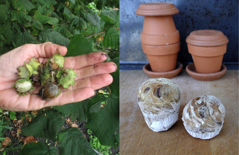 sleutelmoment hazelnoten plukken en bloempotbroodjes